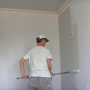 Water Based Acrylic Copolymer for Wall Coating, HMP-3998